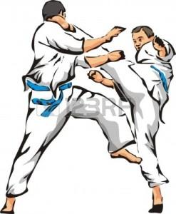 10400649-karate-fight--unarmed-combat