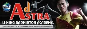 badminton 30x10